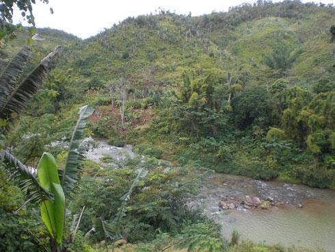 Conservation International  Stratégies d'appui à la réduction de la vulnérabilité des paysans
