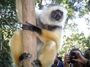 La conservation de la biodiversité nécessite une certaine compétence. (Photo d'archives)