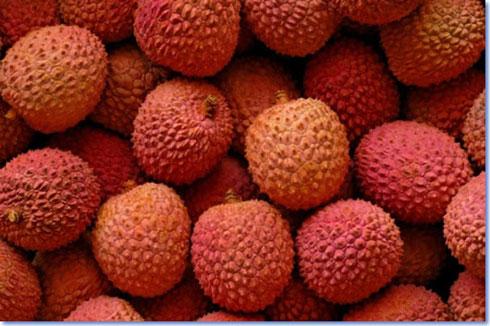 Exportation : Plus de 14 000 tonnes de litchis malgaches sur le marché européen