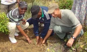 Le directeur régional de l'environnement et des forêts (à g.) et le chef district d'Ambositra (à dr.) entourant le chef de région Razafimaro Joseph lors du lancement officiel. (Photo Anastase)