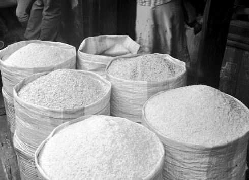Prix du riz : Fortes fluctuations dans les zones productrices et les grandes villes