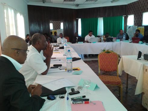 Participation citoyenne : Le budget participatif comme modèle de réussite