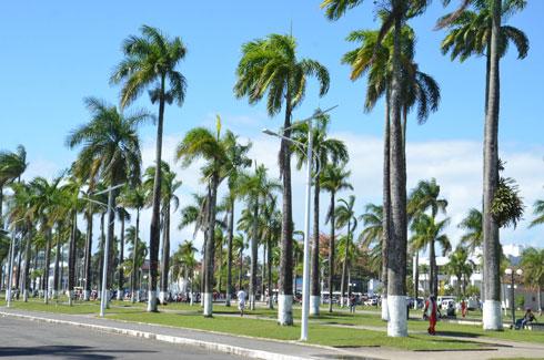 Bianco Toamasina 10 ans : 250 dossiers transmis aux juridictions