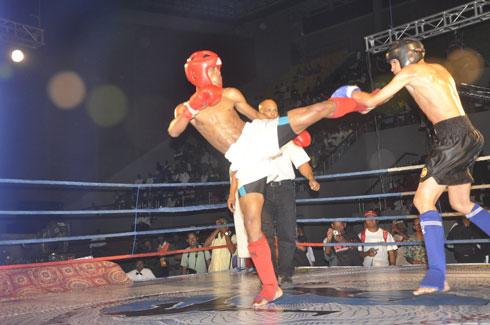 Grand Gala de Muay-thaï : Julien vs Eddy, le choc de titans