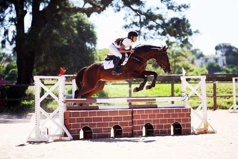 Equitation – Championnat de Madagascar : La grande finale pour ce week-end au COT