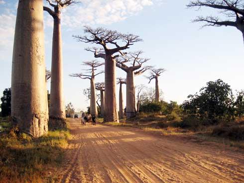 Tourisme : Les réservations en ligne en hausse